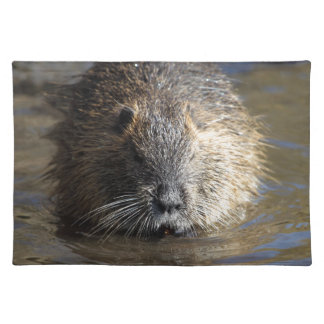 Photo of a coypu (Myocastor coypus) in water. Cloth Placemat