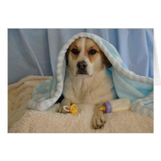 Photo of a dog as a baby boy card