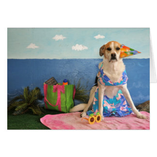 Photo of a dog in a swim suit, near the ocean, card