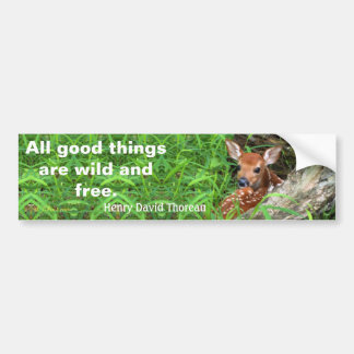 Photo of a fawn and a quote by Thoreau - Bumper Sticker