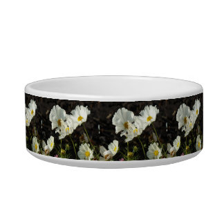 Photo of a Flower Bed of White and Gold Daisies Pet Bowls