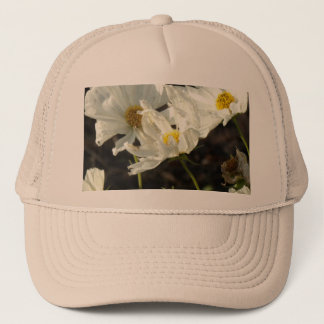 Photo of a Flower Bed of White and Gold Daisies Trucker Hat