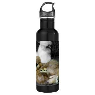 Photo of a Flower Bed of White and Gold Daisies Water Bottle