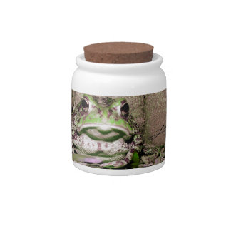 Photo of a funnycolorful fat toad frog candy jars