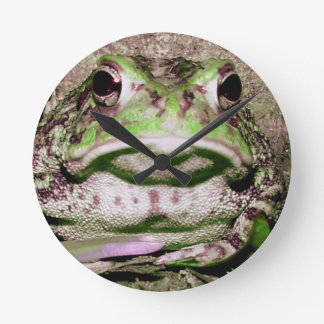 Photo of a funnycolorful fat toad frog round clocks