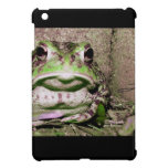 Photo of a funnycolorful fat toad frog iPad mini covers