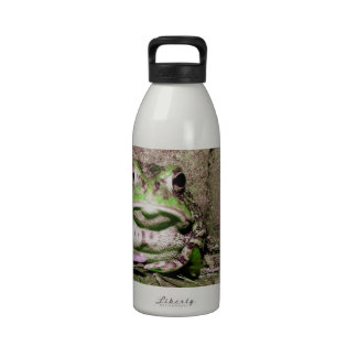 Photo of a funnycolorful fat toad frog reusable water bottle