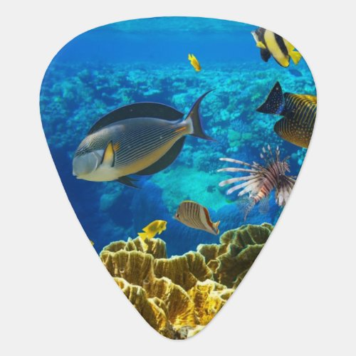Photo of a tropical Fish on a coral reef Guitar Pick