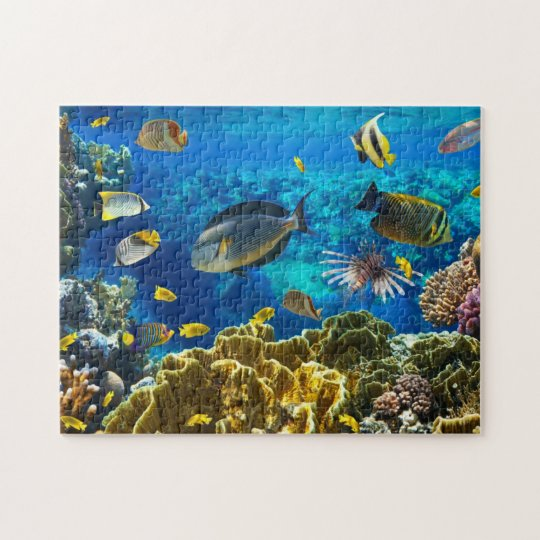 Photo Of A Tropical Fish On A Coral Reef Jigsaw Puzzle