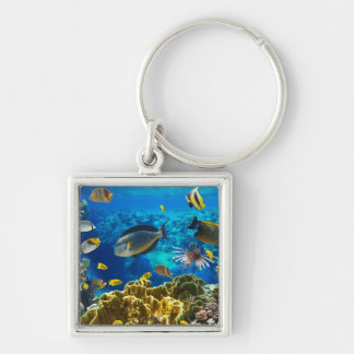 Photo of a tropical Fish on a coral reef Key Chain