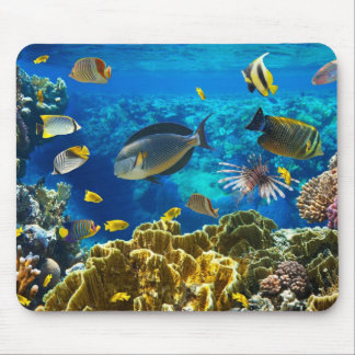Photo of a tropical Fish on a coral reef Mouse Pad