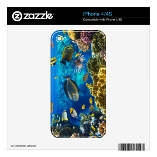 Photo of a tropical Fish on a coral reef Skin For iPhone 4