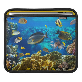 Photo of a tropical Fish on a coral reef Sleeves For iPads