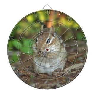 Photo of adorable chipmunk dartboards