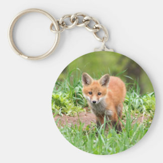 Photo of adorable red fox kit keychain