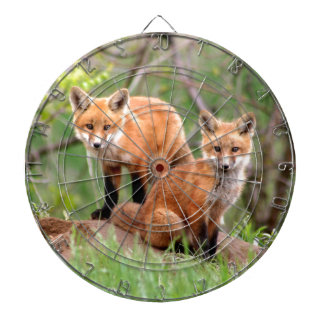 Photo of adorable red fox kits dartboards