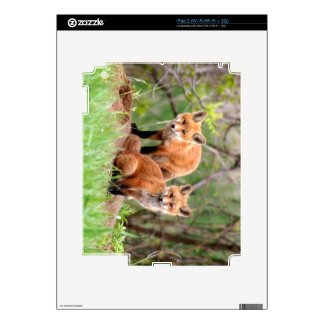 Photo of adorable red fox kits decals for the iPad 2