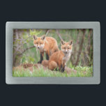 "Photo of adorable red fox kits rectangular belt buckle<br><div class=""desc"">I was fortunate enough to come upon these red fox kits playing,  and was blessed with the opportunity to watch them.</div>"