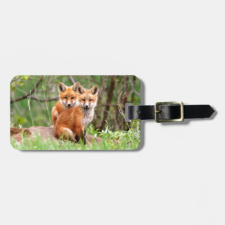 Photo of adorable red fox kits sitting together bag tag