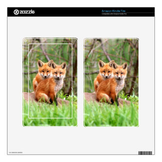 Photo of adorable red fox kits sitting together decal for kindle fire