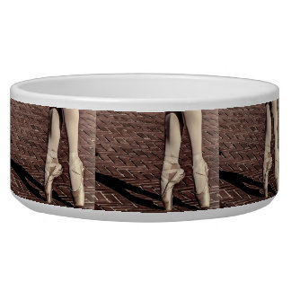 Photo of Ballet Slippers Pet Water Bowls