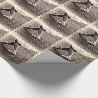 Photo of Ballet Slippers Gift Wrap