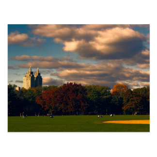Photo of Central Park in New York City Postcard