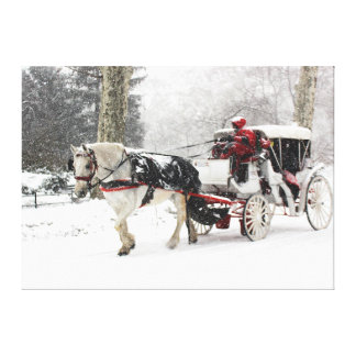 Photo of Central Park Landscape in Winter Canvas Print