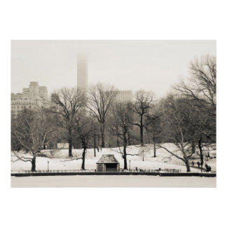 Photo of Central Park Winter Landscape Poster