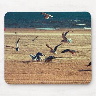 Photo of Coney Island Beach w/Seagulls Mousepad