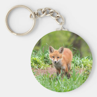 Photo of curious fox kit keychain