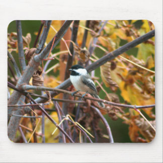 Photo of cute Black-Capped Chickadee Mouse Pad