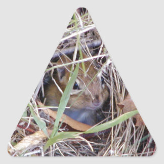 Photo of cute mouse triangle sticker