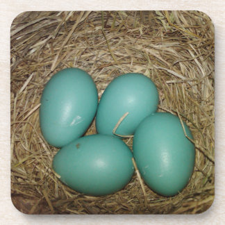 Photo of Four Blue Robin's Eggs in a Nest Coaster