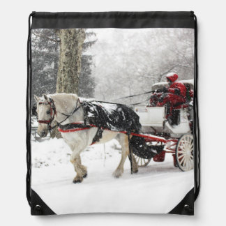 Photo of Horse and Buggy in Central Park Winter Backpacks