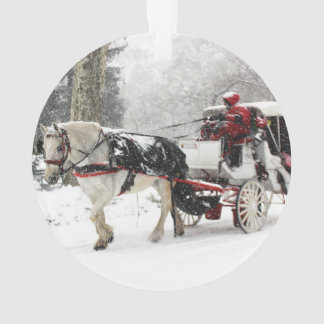 Photo of Horse and Buggy in Central Park Winter Ornament