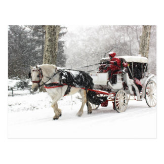 Photo of Horse and Buggy in Central Park Winter Postcard