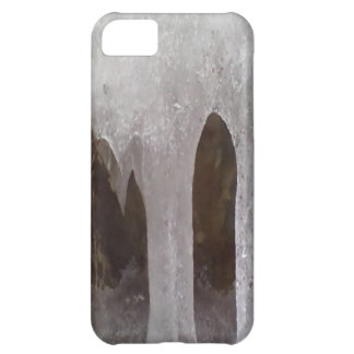 Photo of ice iPhone 5C covers