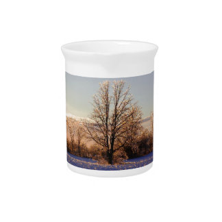Photo of ice-covered tree beverage pitcher