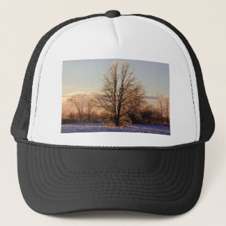 Photo of ice-covered tree trucker hat