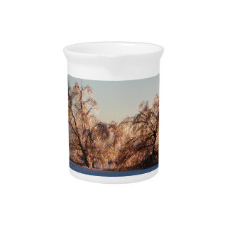 photo of ice-covered trees beverage pitcher