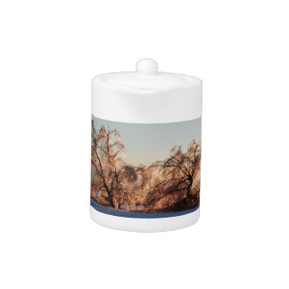 photo of ice-covered trees teapot