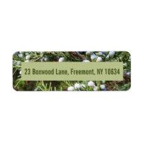 Photo of juniper bush with return address label