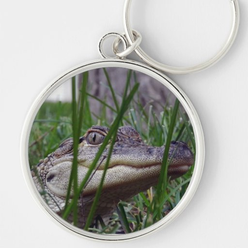 Photo of my Baby Alligator In The Grass Silver-Colored Round Keychain