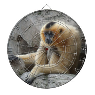 Photo of Orange and Black Gibbon Relaxing on Cliff Dartboards