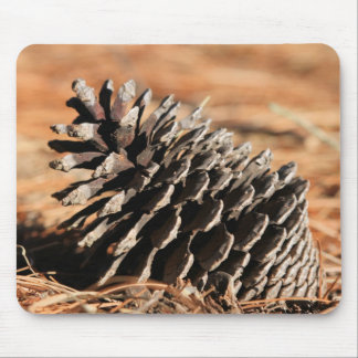 Photo of pine seed on red winter needles mouse pad