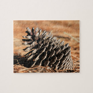 Photo of pine seed on red winter needles jigsaw puzzles
