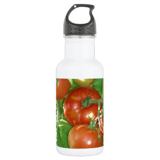 Photo of ripe red tomatoes on the vine. stainless steel water bottle