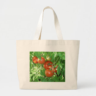 Photo of ripe red tomatoes on the vine. tote bags