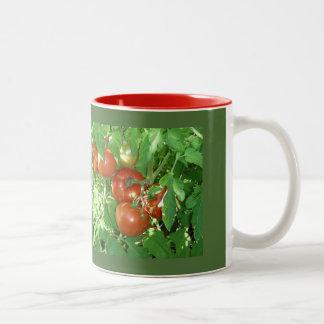 Photo of ripe red tomatoes on the vine. Two-Tone coffee mug